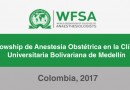 Becas WFSA de Anestesia Obstétrica  2017 – Colombia